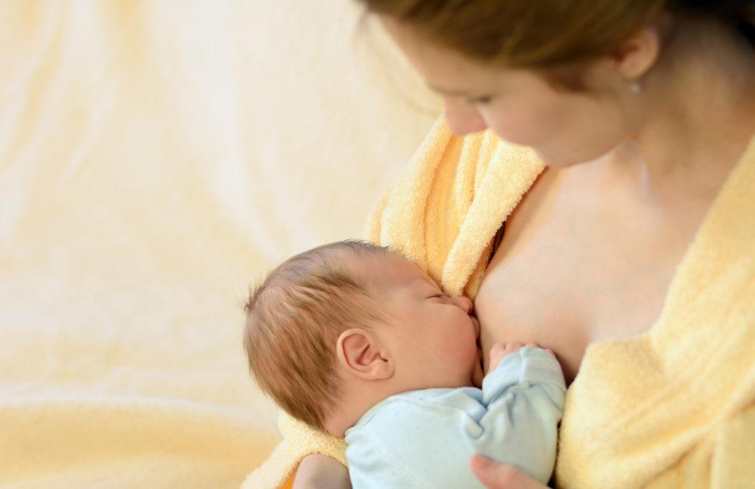 lactancia y embarazo