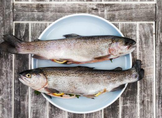 comer pescado embarazo
