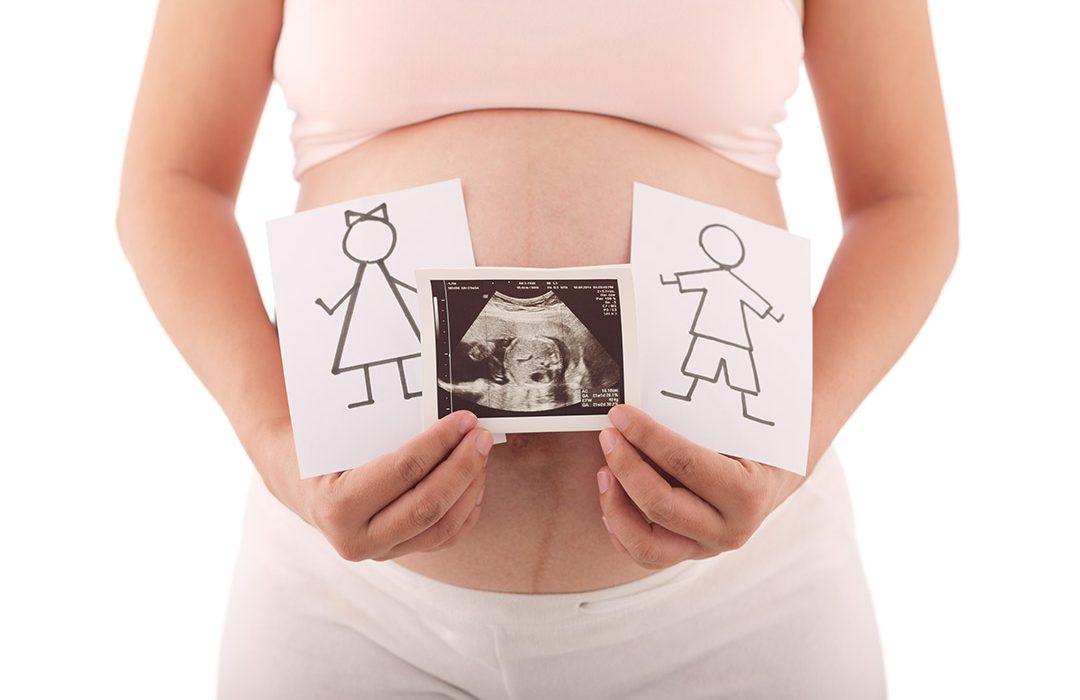 quinto mes de embarazo