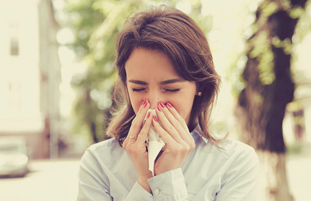 ¡Plántale cara a la alergia estacional!