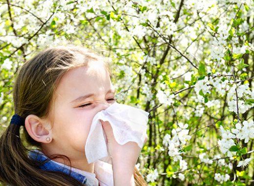 Lluvia, primavera y alergia al polen en niños