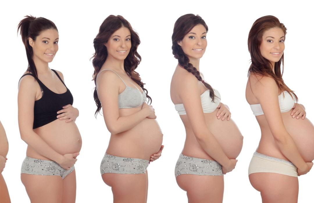 sujetadores embarazo