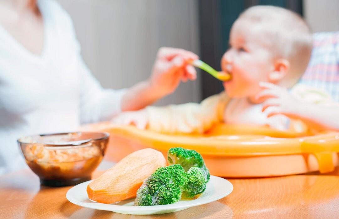 alimentacion ecologica bebe