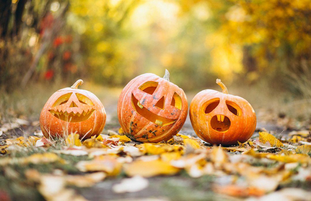 curiosidades sobre halloween