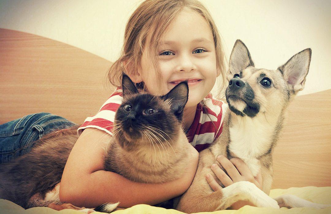 animales compania y niños